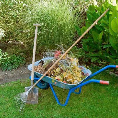 garden-cleanup1