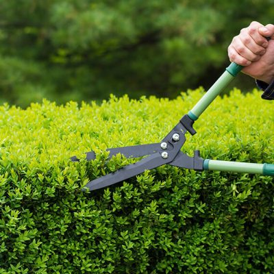 hedging-futures